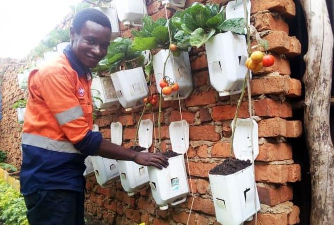 Des jardins verticaux pour nourrir la ville de Bukavu